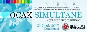 simultane_2017